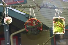 1. Collect winter foliage, 2. Place in pie tin, 3. Lay in ribbon on the top for a hook, 4. Freeze