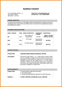 Professional Resume Word Engineering  Google Search  Resume