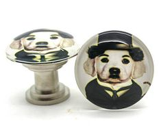 Knobs / Poirot Dog Knobs / Glass Knobs, Cabinet Knobs, Clear Glass Knobs with Dog, Dog Knobs, Funny