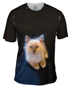 Fluffy Kitty Cat Stare all-over printed Mens T-Shirt by Yizzam. Make your style shine! Cat Shirts, Shirt Outfit, Funny Cats, Your Style, Kitty, Mens Tops, How To Wear, Clothes, Products