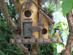 Atttract birds and other wildlife with a bird friendly garden - advice on planting, bird care products, feeding birds, and keeping predators away. Sounds Of Birds, Old Wine Bottles, Concrete Leaves, Old Farmers Almanac, Old Lamps, Birds And The Bees, Pretty Birds, Winter Fun, Weekend Is Over