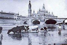 1910, Zaragoza Rio, Taj Mahal, Horses, Cities, Robert Capa, Zaragoza, Antique Photos, Fotografia, Places