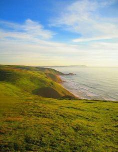 tomales point trail at the reyes national seashore [oc] [1536 x 1973]