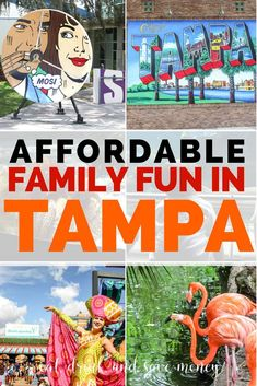 Get a Tampa Bay CityPASS to unlock all the fun in Tampa. Affordable family fun in Tampa, FL. What to do in Tampa. Family vacation in Florida. Florida Vacation Packages, Florida Travel, Vacation Spots, Vacation Ideas, Florida Trips, Mexico Vacation, Vacation Outfits, Vacation Places, Florida Keys