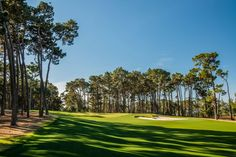 Catching Up On The Poppy Hills Renovation In One Post Updated