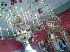 @paleishetloo Royal Showpieces, een ongewone kijk op vormgeving in vijf paleiszalen