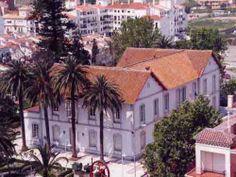 """La Casa Larios se encuentra en Torre Del mar. Esta villa fué construida a finales del Siglo XIX, cuando en Torre del Mar se construyó el """"Ingenio Azucarero de Nuestra Señora del Carmen"""". La casa que era la vivienda del Ingeniero de la Fábrica y también oficinas para el personal, se encuentra rodeada de un bonito jardín con arboles centenarios. Hoy en día es la sede de la tenencia de Alcaldía"""