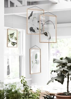 The Floating Leaves series is the result of a collaboration between 3 Copenhagen-based design companies, Paper Collective, Moebe and Norm Architects, comes a brand new series of transparent art prints created for the iconic Moebe frames. Leaf Projects, Free Frames, Wall Decor, Room Decor, Floating, Leaf Prints, Foil Prints, Art Prints, Danish Design