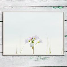 Flower picture wall art pink nature floral wall paper instant