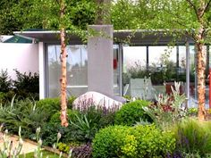 Dan Pearson Garden designs at the RHS Chelsea Flower Show 2005 | GardenVisit.com, the garden landscape guide