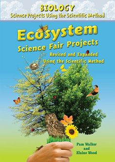 1000 images about science projects on pinterest ideas for Fishing science fair projects