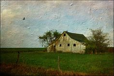 The slower you go the bigger your world gets • Posts Tagged 'barns' Get Post, Canvas 5, Barns, Posts, Sky, World, House Styles, Heaven, Messages