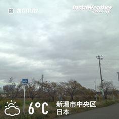おはようございます! 曇り空から新しい一週間のスタートです〜♪