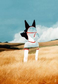Four-legged Beings Utah-based designer and illustrator Jenna Barton creates mysterious anthropomorphic scenes of dogs, foxes, deer, and other four-legged beings. Art And Illustration, Flower Illustrations, Art Inspiration Drawing, Art Inspo, Illustrator, Colossal Art, Grafik Design, Photomontage, Art Reference
