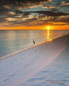Crooked Island Beach near Mexico Beach