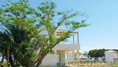 Odalys Acqua Linda is gelegen in het gehucht L'Avillanella, aan de rand van het grote zandstrand dat te bereiken is via een wandelpad. Je kunt ook heerlijk genieten bij of in het openluchtzwembad met groot zonneterras. Voor kinderen is er een apart kinderzwembad en een speeltuintje. Poggio Mezzana is een schilderachtig dorp aan de oostelijke Corsicaanse Costa Verde dat zijn karakter heeft weten te behouden. Het is gelegen op 40 km van de mooie havenstad Bastia. Officiële categorie ***