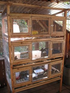 quail housing with pull-out poop trays