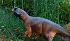 """جسد """"الديناصور الجميل"""" في الصين يحمل خطوطًا…: توصل العلماء إلىشكل ديناصورصغير عاش قبل 120 مليون سنة في غابات الصين، بعد دراسه جلده…"""