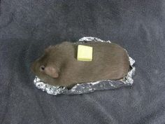 Something's wrong with my baked potato.