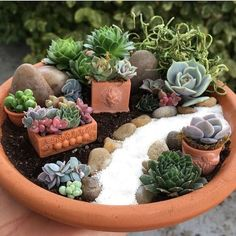 Have you ever seen a fairy garden? It is a miniature garden, a small magical world you can create in a flower pot or garden bed. This project is fun for the whole family. A fairy garden is a combination of a mini garden and an outdoor doll house. Succulent Gardening, Garden Terrarium, Cacti And Succulents, Planting Succulents, Succulent Arrangements, Succulent Pots, Organic Gardening, Succulent Garden Ideas, Gardening Tips