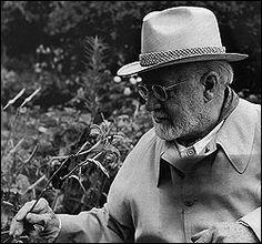 Matisse. Imagen tomada de http://www.amis-arts.com/peintre/matisse/le_mouvement_fauve.htm#