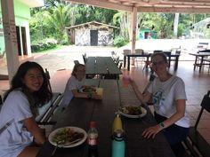 Volunteer in Costa Rica: Sloth/Mammal Conservation Amphibians, Mammals, Costa Rica Sloth, Turtle Conservation, Volunteer Abroad, Sea Turtles, Pet Care, Environment, Park