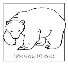Winter Animals Coloring Pages | Coloring Pages Of Winter Animals 600x600px
