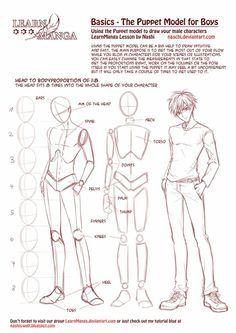 character anatomy and body tutorial