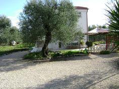 Bed & Breakfast ecosostenibile Puglia:Villa Mediterranee