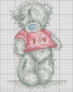Teddi orso in camicia rosa