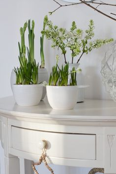 Decor, House Styles, Porch Decorating, Spring Bulbs, White Cottage, White Flowers, Cottage Decor, Fresh House, White Houses