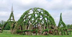 Now these are the ultimate tree houses. Living trees are guided into the shapes of towers, cathedrals, and pavilions, creating wooden structures that continue to grow and bud and bloom. Living Willow, Natural Architecture, Japanese Cherry Tree, Tree Logs, Organic Structure, Cool Tree Houses, Tree Sculpture, Growing Tree, Environmental Art