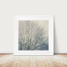 snow photograph winter photograph nature by oohprettyshiny on Etsy