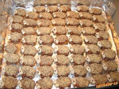 CUKROVÍČKO našich loňských 40 druhů s recepty a obrazovou dokumentací Czech Recipes, Holiday Cookies, Rum, Cooker, Cereal, Food And Drink, Cooking Recipes, Sweets, Breakfast