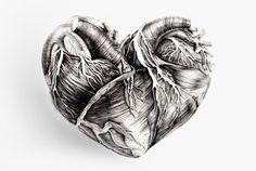 """""""His heart was like a sensitive plant, that opens for a moment in the sunshine, but curls up and shrinks into itself at the slightest touch of the finger, or the lightest breath of wind.""""   - Anne Bronte"""