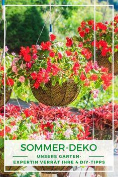 Sommerdeko basteln: Endlich heißt es wieder: Raus in den Garten und die Sonnenstrahlen genießen! Für die perfekte Sommerstimmung im Garten darf dabei natürlich sommerliche Deko auf keinen Fall fehlen. Deswegen haben wir eine Garten-Expertin nach ihren persönlichen Deko-Highlights gefragt und präsentieren Ihnen 4 DIY-Ideen. Highlights, Plants, Craft, Summer Decorating, Summer Garden, Sun Rays, Decorating Ideas, Nature, Luminizer