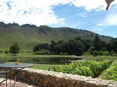Craggy Range Winery - Hastings, New Zealand Wine List, Online Tickets, French Polynesia, Bora Bora, Fiji, New Zealand, Places To See, Trip Advisor, Golf Courses