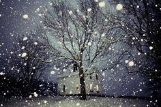 Heavy snowfall in Western New York