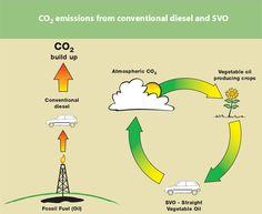 100% Eco friendly technology