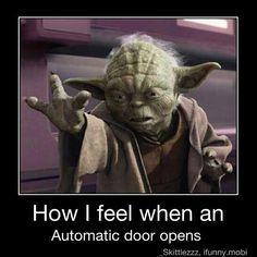 funny yoda -