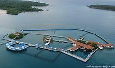 Dolphinarium, Cayo Naranjo; Cayo Naranjo, Holguin 80100, Cuba; no lo se exactamente precio pero es caro; 24 horas cada los dias