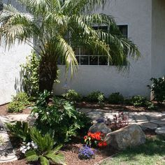 Tropical Landscape Design, Pictures, Remodel, Decor and Ideas - page 109