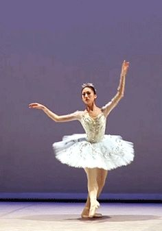 Ballerina animated gif - Life Like A Fairytale ballet hand movements motion Dance Photos, Dance Pictures, Lausanne, Esmeralda Costume, Sleeping Beauty Ballet, Vaganova Ballet Academy, Dance Dreams, Ballet Beautiful, Lets Dance