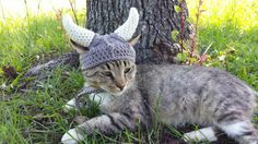https://www.etsy.com/ca/listing/194722699/viking-helmet-for-cats-viking-cat-hat