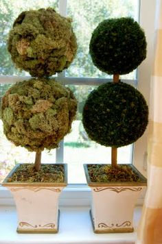 It doesn't have to be perfect to be beautiful Topiary Decor, Topiaries, Dream Wedding, Wedding Dreams, Home Look, Diy Home Decor, Design Inspiration, Diy Crafts, Fruit