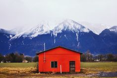 Orange crush. Chilliwack, BC.    David Arias   VSCO Grid