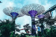 14 Things To See, Eat & Do in Singapore (19)