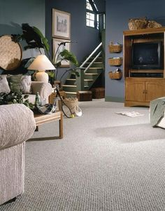About Alfombra On Pinterest Mohawk Carpet Carpets And Mohawks