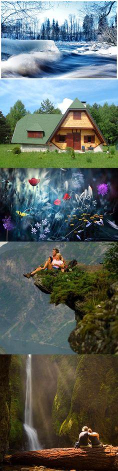 Together in nature Iran, Aquarium, Nature, Goldfish Bowl, Naturaleza, Aquarium Fish Tank, Aquarius, Nature Illustration, Off Grid