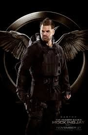 Catsor from the Hunger Games